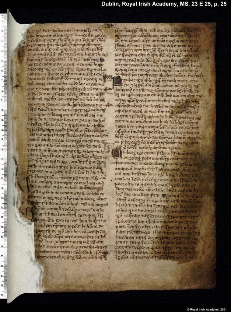 """Leabhar na hÚidhre or the """"Book of the Dun Cow"""", a Medieval manuscript which contains a wealth of Irish mythological materials"""