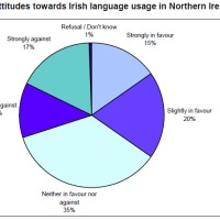 Surprise Results For New Irish Language Survey In The North