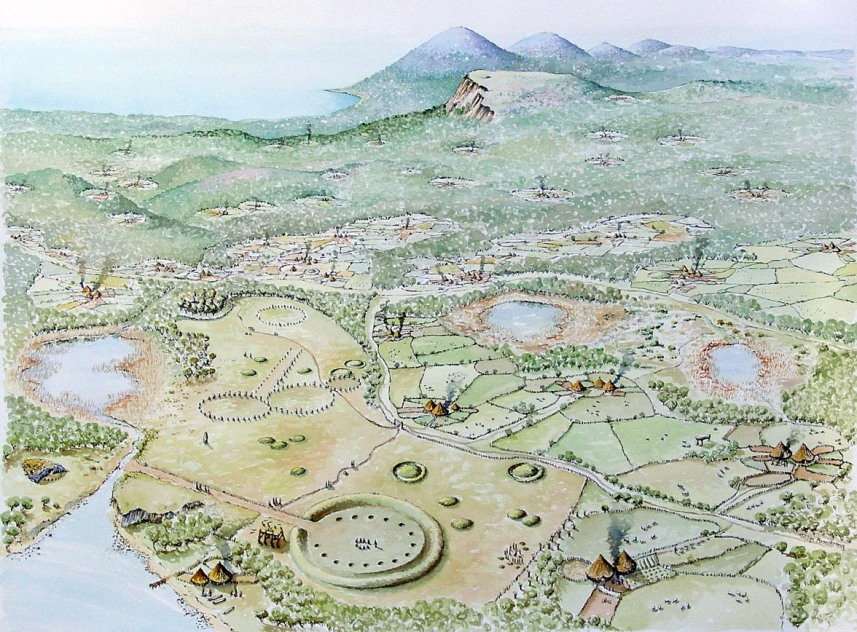 An overview of the settlement landscape of Ireland during the latter part of the Bronze Age