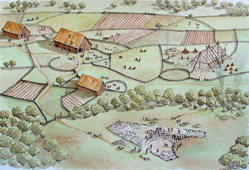 The permanent settlement of a farming community in Ireland during the Neolithic Age
