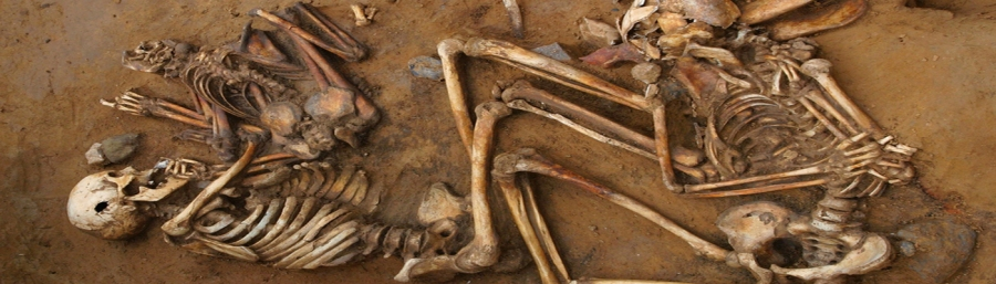 Archaeology and history in burial of skeletons and bones in grave